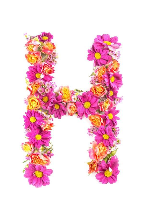 Listy i liczby robić od żywych kwiatów odizolowywających na białym tle, robią tekstowi z kwiatu abecadłem, wyłączny pomysł dla wy zdjęcie royalty free