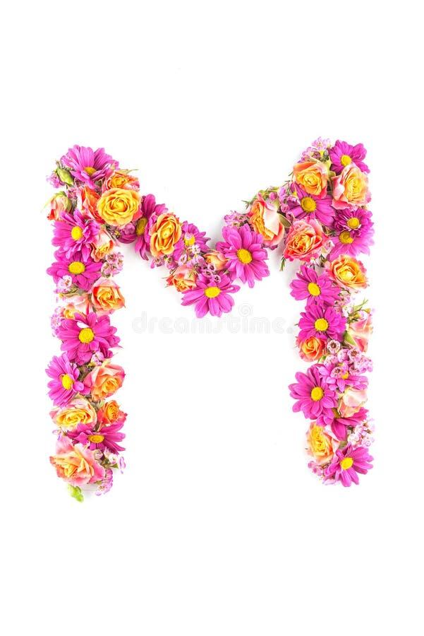Listy i liczby robić od żywych kwiatów odizolowywających na białym tle, robią tekstowi z kwiatu abecadłem, wyłączny pomysł dla wy zdjęcie stock