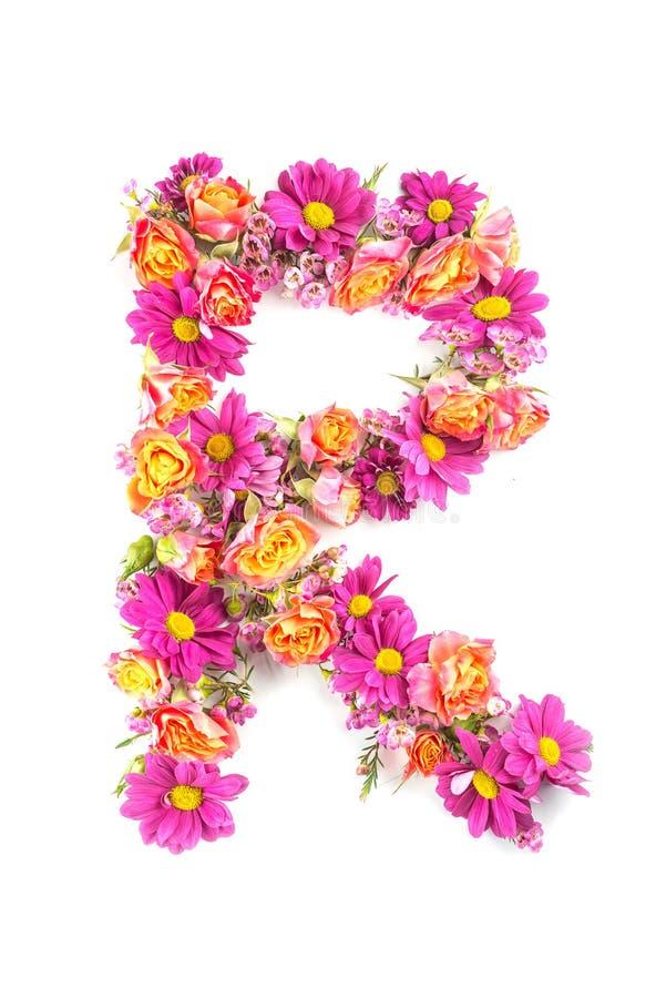Listy i liczby robić od żywych kwiatów odizolowywających na białym tle, robią tekstowi z kwiatu abecadłem, wyłączny pomysł dla wy zdjęcia stock