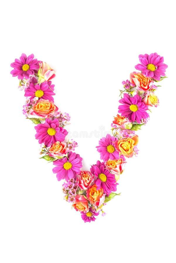 Listy i liczby robić od żywych kwiatów odizolowywających na białym tle, robią tekstowi z kwiatu abecadłem, wyłączny pomysł dla wy zdjęcia royalty free