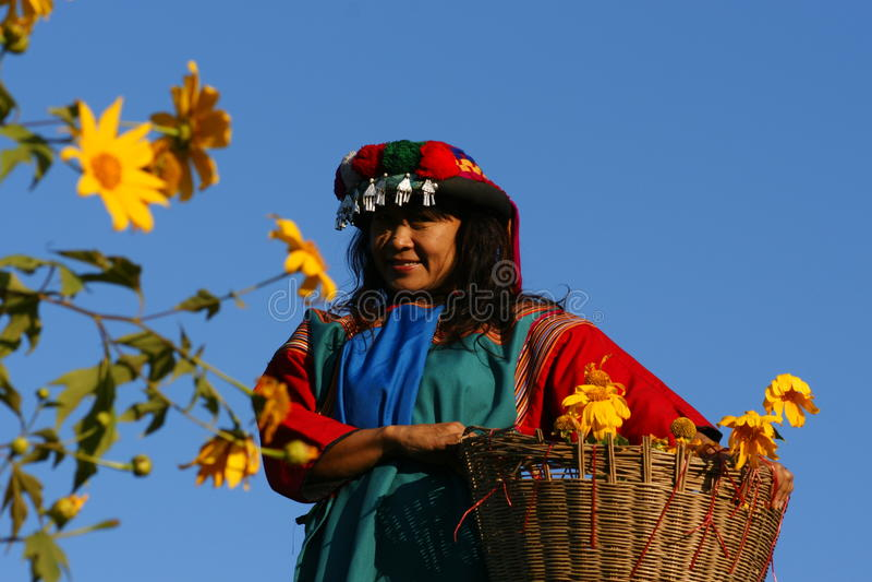 Lisu hill tribe woman in costume. Picking flowers stock image