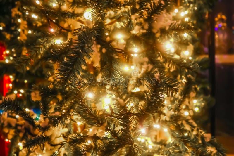 Lit вверх по рождественской елке снаружи на улице с светами круга bokeh на дереве и в запачканном расстоянии - стоковое изображение rf