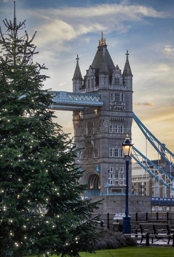 A lit christmas tree in front of the famous Tower Bridge of London during winter time. A beautiful, lit christmas tree in front of the famous Tower Bridge of royalty free stock photos