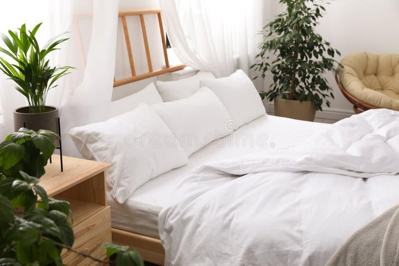Lit confortable avec les oreillers mous dans la chambre photo libre de droits
