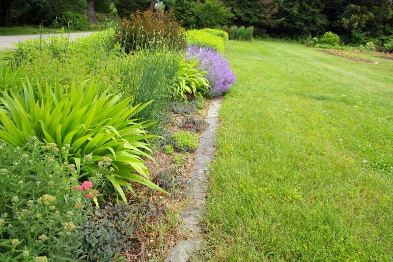 Lit de fleur dans le jardin ensoleillé photo stock