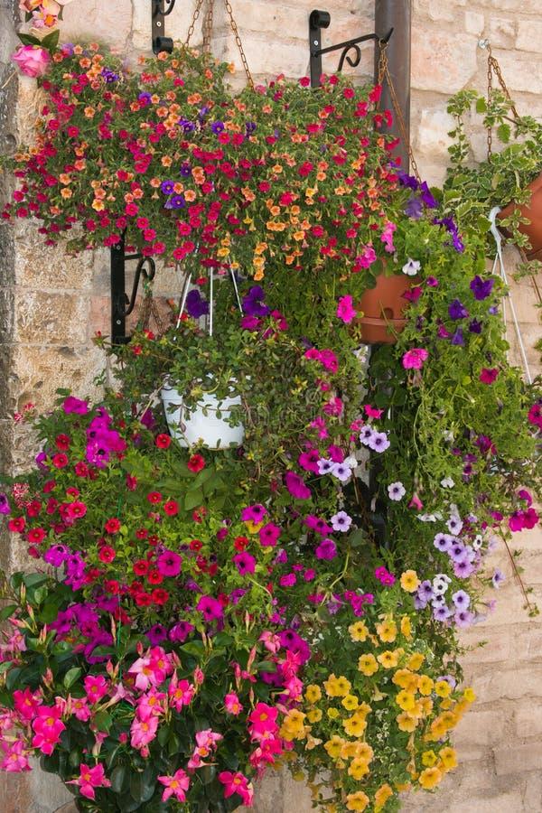 Lit de fleur de luxe dans un vase image stock