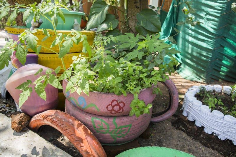 Lit de fleur peu commun dans le jardin Un lit de fleur hors de vieux pneus de voiture conception de parterre Ressort, été, jardin photo libre de droits