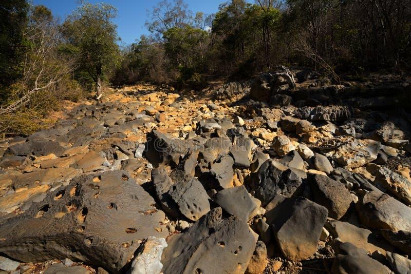Lit de la rivière de pierres sèches, Ankarana Madagascar photographie stock libre de droits