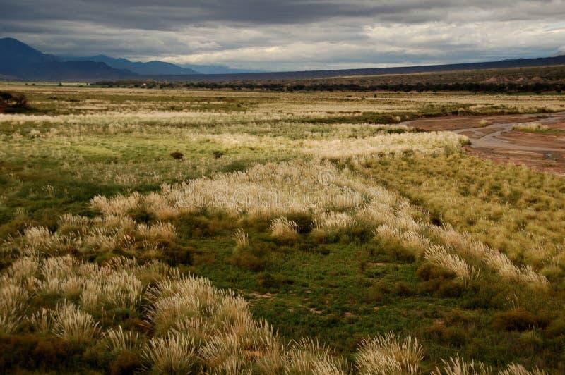 Lit de la rivière large avec des centrales, Argentine images libres de droits