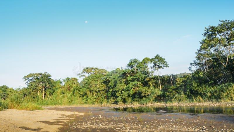 Lit de la rivière sec de rivière Napo dans la section équatorienne de la forêt tropicale amazonienne photos stock