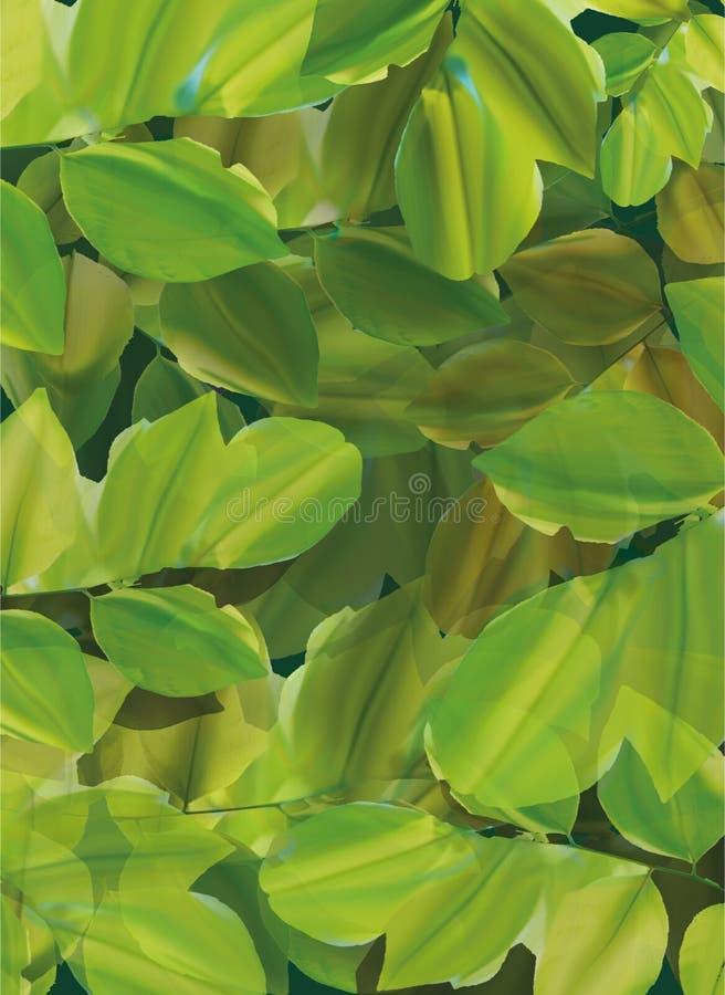 Lit des feuilles photos stock