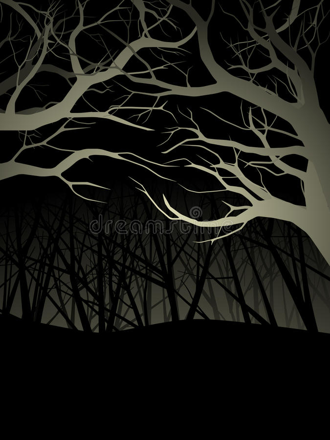 Download Lit forest canopy at night stock vector. Illustration of halloween - 16520088