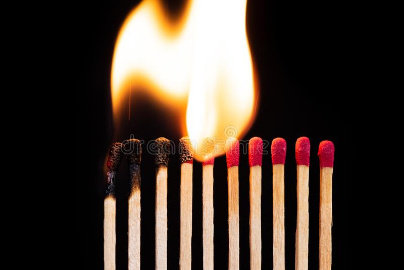 Lit match next to a row of unlit matches. The Passion of One Ignites New Ideas, Change in Others royalty free stock image