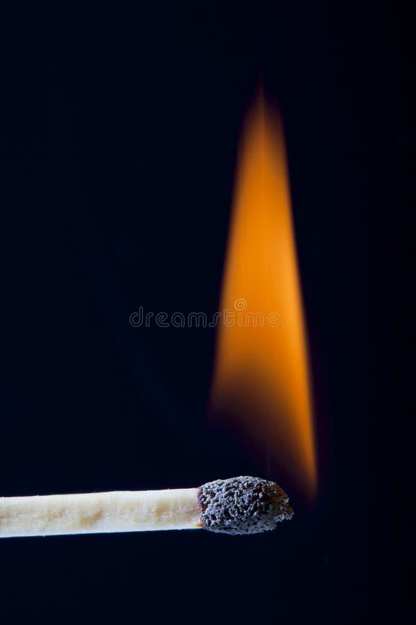 Download Lit Wooden Match Stick stock image. Image of detail, light - 21529051