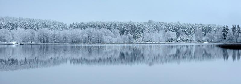 Litauen-Winterlandschaft Panoramische Ansicht lizenzfreie stockfotografie