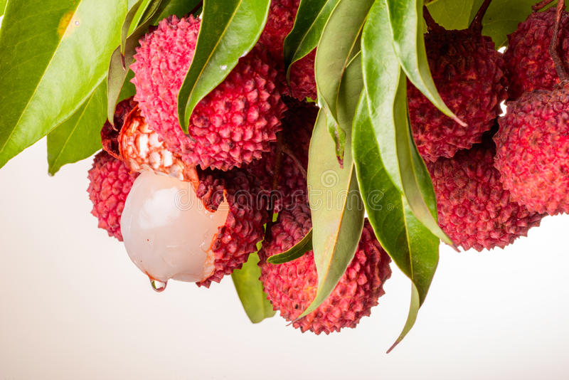 Litchi frais photo stock