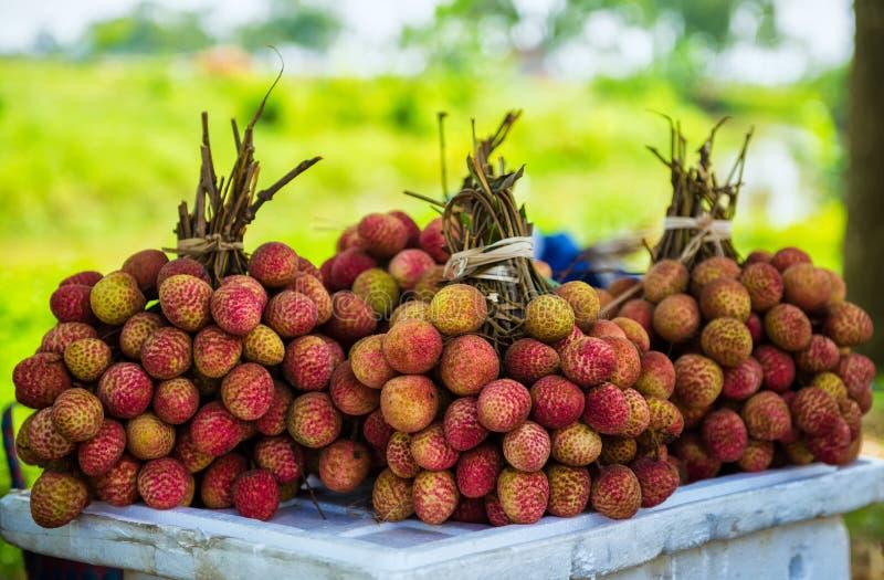 Litchi Thieu стоковые изображения rf