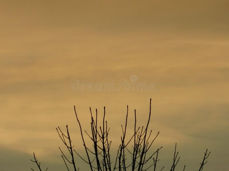 Lite alaranjado bonito no céu imagens de stock royalty free