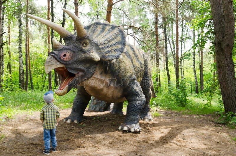 Lite betraktar pojken en dinosauriemodell Triceratops royaltyfri foto