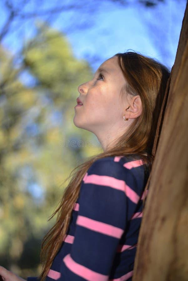 Lite en flicka som vilar på en trädfilial royaltyfri bild