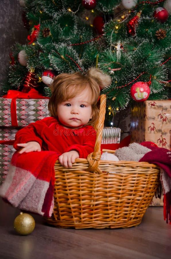 Lite flicka i en korg under en julgran royaltyfria bilder