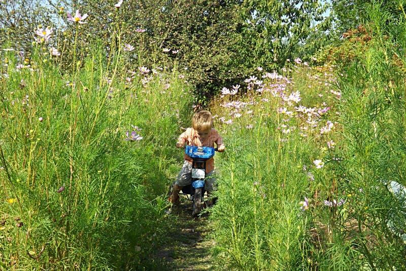 Lite lär pojken att rida en cykel arkivfoto
