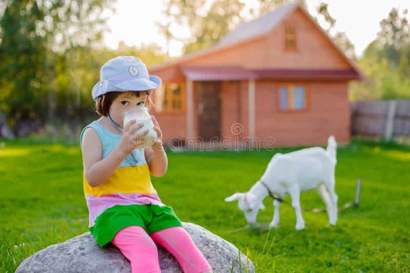Lite matar flickan en get på gräsmattan per solig sommar, i ett land i Ryssland arkivbild