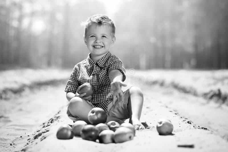 Lite pojke med äpplen på den utomhus- naturen royaltyfri fotografi