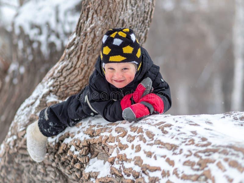 Lite pojke som ligger på ett stort stupat träd i vinter arkivfoto