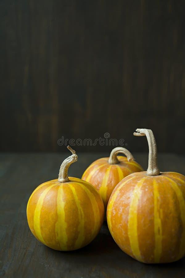 Lite pumpor Dekorativ pumpa p? tabellen halloween Besk?da fr?n sidan Stranda av h?r v?nder mot in arkivfoto