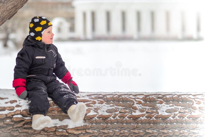 Lite sitter pojken på ett stort stupat träd i vinter royaltyfri fotografi