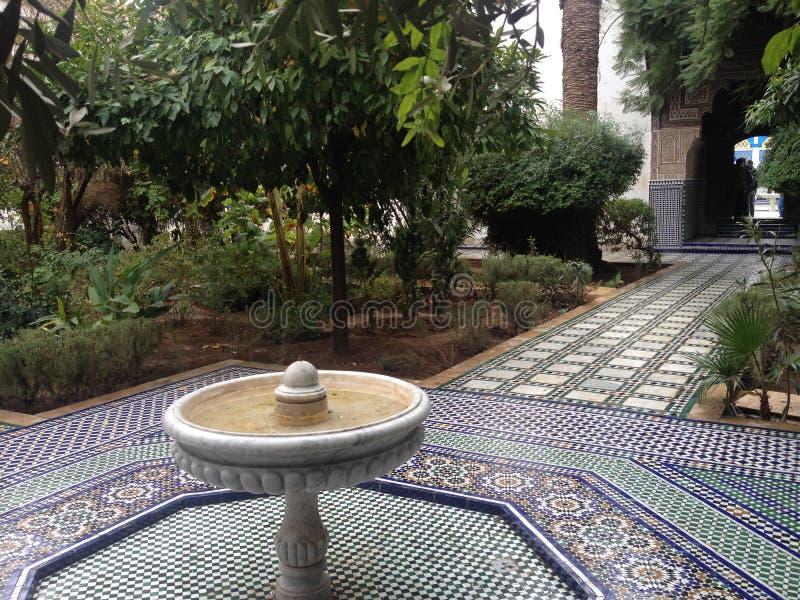 Lite trädgård arkivfoton