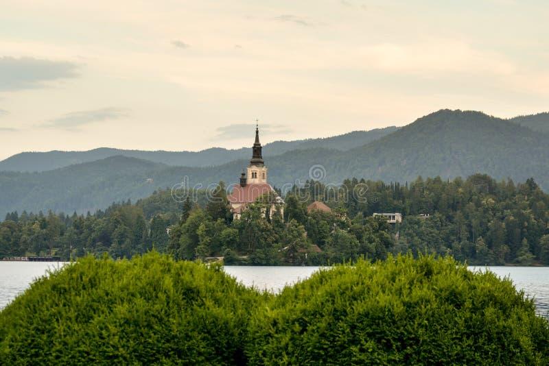 Liten ö med katolska kyrkan i den blödde sjön arkivfoton