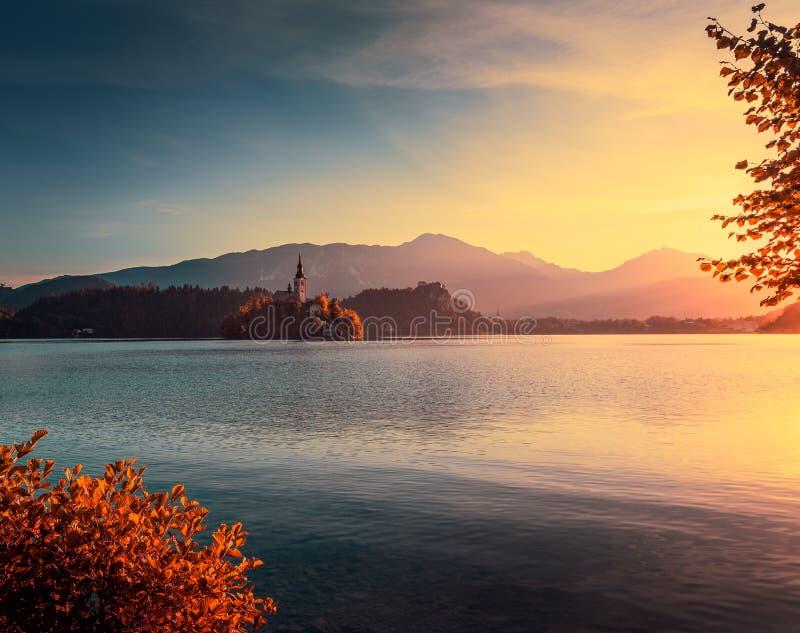 Liten ö med kyrkan i den blödde sjön, Slovenien på Autumn Sunri royaltyfria bilder