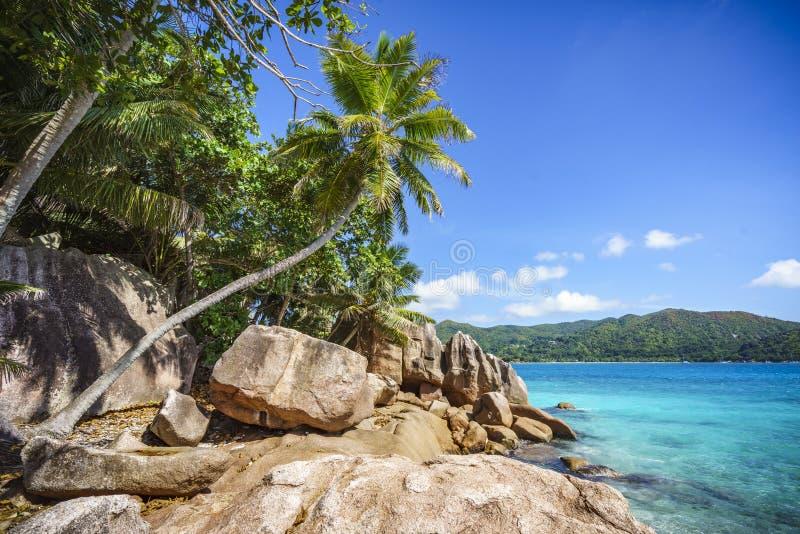 Liten ö St Pierre på Seychellernaen 5 royaltyfri foto