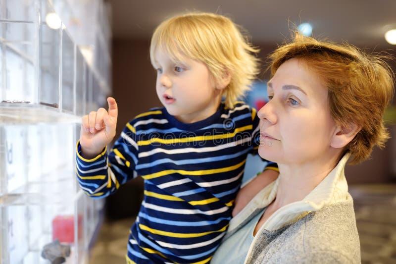 Liten сaucasian pojke och kvinna som ser en utläggning i ett vetenskapligt museum periodisk tabell f?r chemical element arkivbild