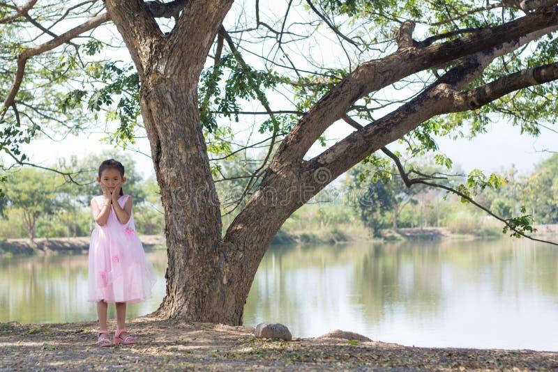Liten asiatisk flicka med trädet nära lagun royaltyfria foton