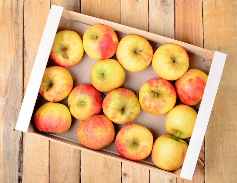 Liten ask av äpplen för äppeljuice fotografering för bildbyråer