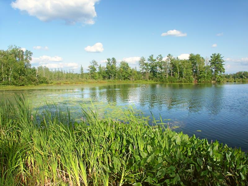 Liten Bearskin sjö Wisconsin royaltyfria foton