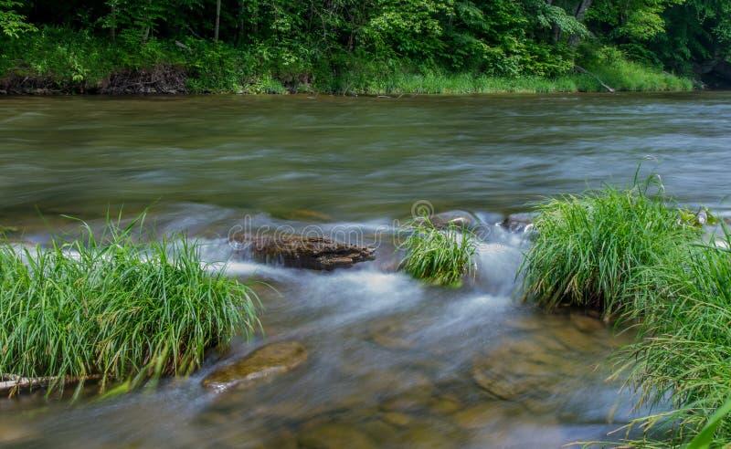 Liten Beaverkill flod - berömd forellström i New York arkivfoton