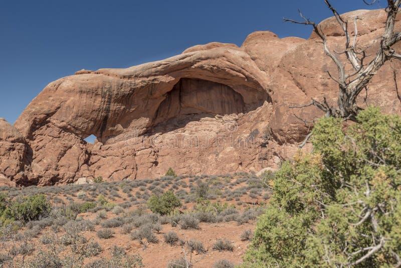 Liten bilda båge- och ökenborste, bågenationalpark Moab Utah arkivbilder