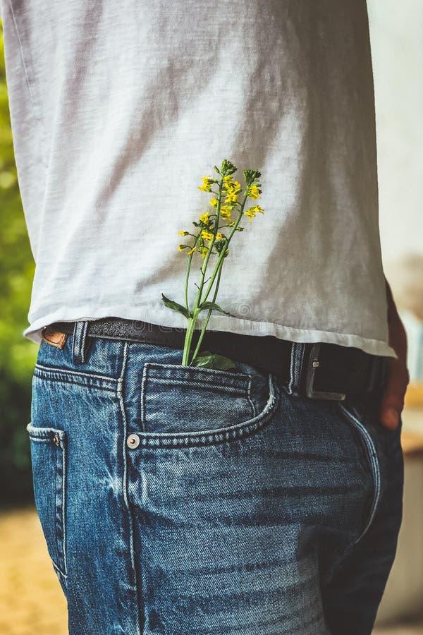Liten blomma i ett fack royaltyfri foto