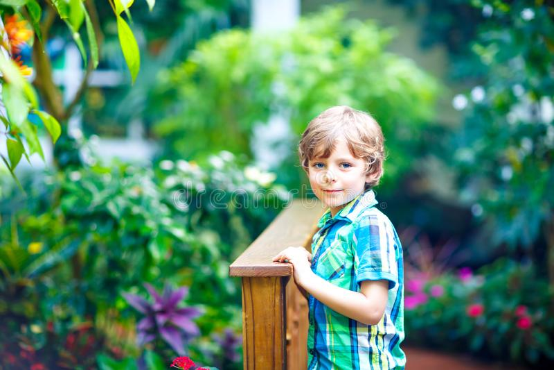 Liten blond förskole- ungepojke som upptäcker blommor, växter och fjärilar på botaniska trädgården Skolbarn som in intresseras royaltyfri bild