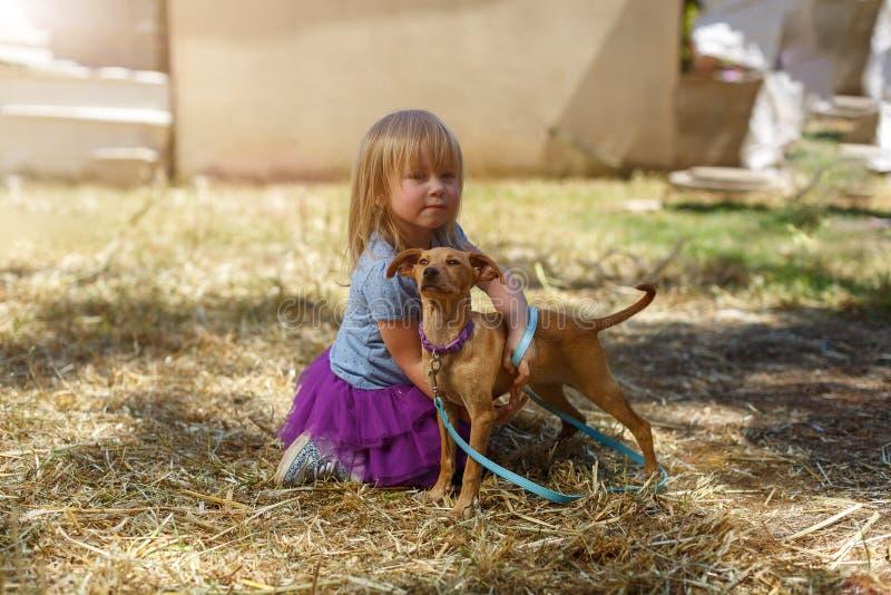 Liten blond flicka med hennes apportörhund arkivfoto