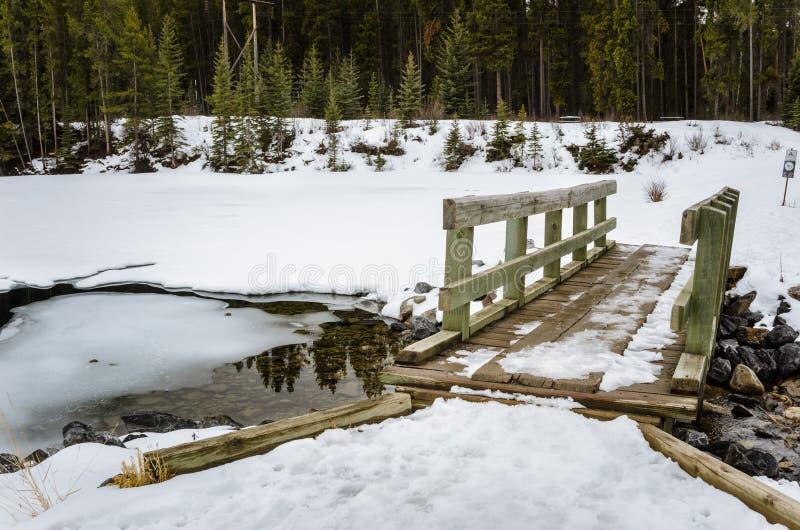 Liten bro som täckas i snö royaltyfria foton