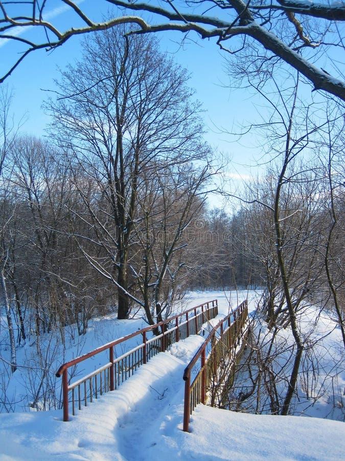 Liten bro vid floden i vinter, Litauen royaltyfri bild