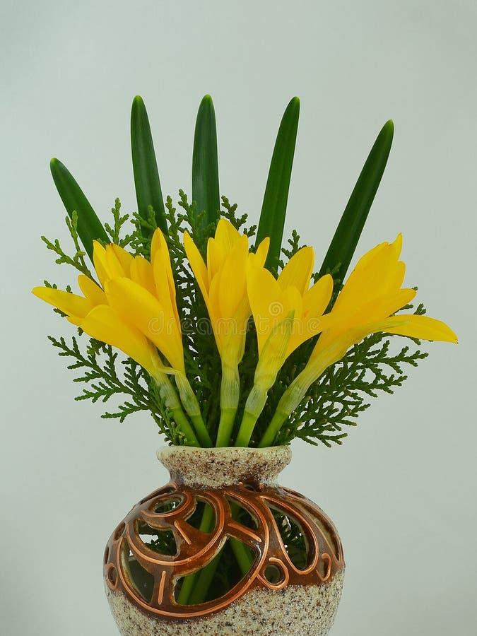 Liten bukett av den gula luteaen för sternbergia för höstkrokusar, lilja-av--fältet, nedgångpåskliljan, vinterpåskliljan med sido fotografering för bildbyråer