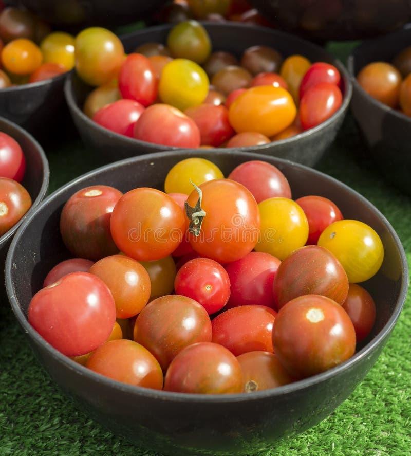 Liten bunke av färgrika körsbärsröda tomater royaltyfria bilder
