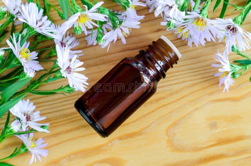 Liten flaska av den växt- extrakten för nödvändig aromolja, tinktur, avkok, bästa sikt arkivbilder