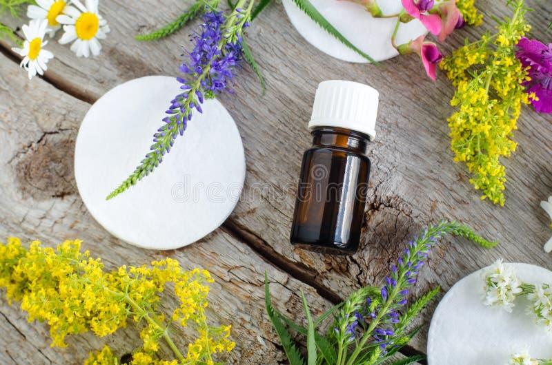 Liten flaska med tinktur för nödvändig olja, avkoken och bomullsblocket Aromatherapy och naturligt begrepp för hudomsorg arkivfoto